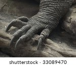 foot and claws  detail   komodo ...   Shutterstock . vector #33089470