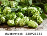 green hop cones with leaves on... | Shutterstock . vector #330928853