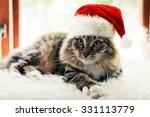 Christmas Cat In Red Santa...