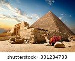 camel rests near ruins of... | Shutterstock . vector #331234733