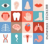 vector organ icons set  flat... | Shutterstock .eps vector #331261388