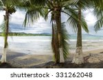 Empty Beach With Palm Trees In...