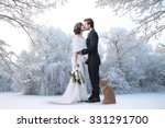 beautiful wedding couple on... | Shutterstock . vector #331291700
