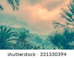 Palms And Moutains In The...