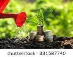 money growth concept plant...   Shutterstock . vector #331587740