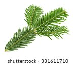 fir tree branch isolated on... | Shutterstock . vector #331611710