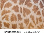 Giraffe Skin Texture For...