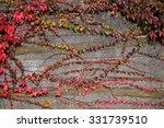 autumn wall | Shutterstock . vector #331739510