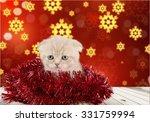 Stock photo christmas 331759994
