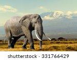 Stock photo elephant on kilimajaro mount background in national park of kenya africa 331766429