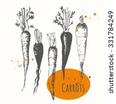 set of hand drawn carrots.... | Shutterstock .eps vector #331784249