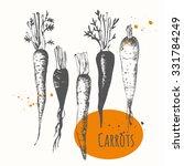 set of hand drawn carrots.... | Shutterstock .eps vector #331784249