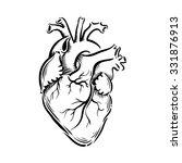 heart | Shutterstock .eps vector #331876913