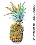 pineapple  watercolor | Shutterstock . vector #331880000