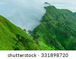 tropical rainforest  khao chang ... | Shutterstock . vector #331898720