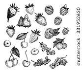 hand drawn vector illustrations ... | Shutterstock .eps vector #331952630