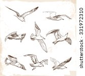 Flying Seagulls. Set Of 8...