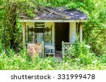 An Old Shack Overgrown In Wood...