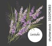 spring lavender flower | Shutterstock .eps vector #332092883