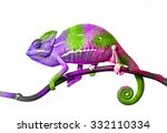 chameleon and colors | Shutterstock . vector #332110334