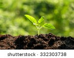 green sprout growing from seed... | Shutterstock . vector #332303738