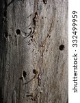 tree bark with holes | Shutterstock . vector #332499959