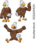 Cartoon Eagle In Different...