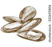 vector engraving illustration... | Shutterstock .eps vector #332655806