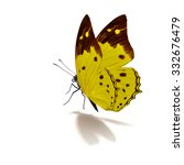 Stock photo beautiful yellow butterfly flying isolated on white background 332676479