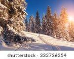 Majestic Winter Landscape...