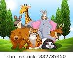 Wild Animals In The Park...