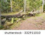 Coarse Woody Debris Or Habitat...