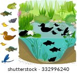find the shadow of pond... | Shutterstock .eps vector #332996240