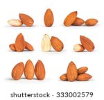 a collection of almonds... | Shutterstock . vector #333002579