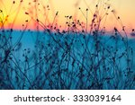 dried flowers on a background... | Shutterstock . vector #333039164