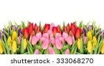 tulips over white background.... | Shutterstock . vector #333068270