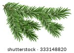 green lush spruce branch. fir... | Shutterstock .eps vector #333148820