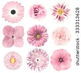 Selection Of Various Flowers I...
