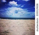 delray beach  florida | Shutterstock . vector #333319838