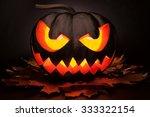 Beautiful Black Pumpkin For...