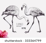 Flamingo Vector Illustration....