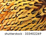 texture pheasant feather | Shutterstock . vector #333402269