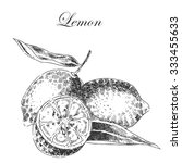 Vector Lemon Citrus Hand Drawn...