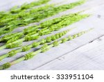 Horsetail Herbal Plants On...