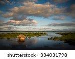 panoramic view of the amazon... | Shutterstock . vector #334031798