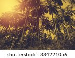 tropical beach landscape with... | Shutterstock . vector #334221056
