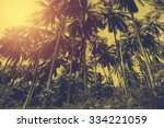 tropical beach landscape with... | Shutterstock . vector #334221059