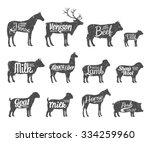set of livestock labels... | Shutterstock .eps vector #334259960