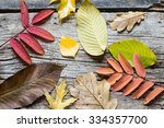 autumn leaves on a wooden... | Shutterstock . vector #334357700