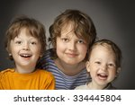 portrait of happy brothers on a ... | Shutterstock . vector #334445804
